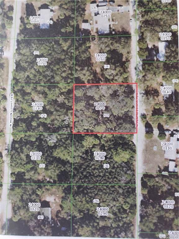 11340 N Clamdigger Terrace, Inglis, FL 34449 (MLS #789077) :: Plantation Realty Inc.