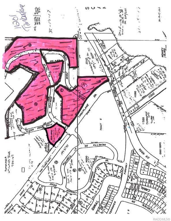 11267 W Timberlane Drive, Homosassa, FL 34448 (MLS #789257) :: Plantation Realty Inc.