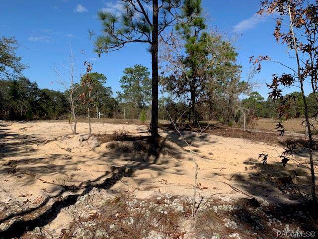 3158 W Fireking Lane, Dunnellon, FL 34433 (MLS #789280) :: Plantation Realty Inc.