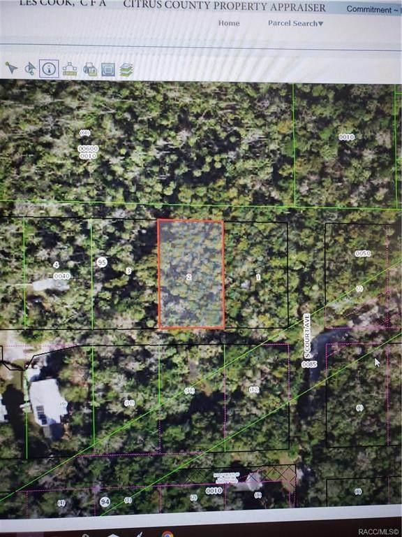 10535 W Fishbowl Drive, Homosassa, FL 34448 (MLS #789401) :: Plantation Realty Inc.