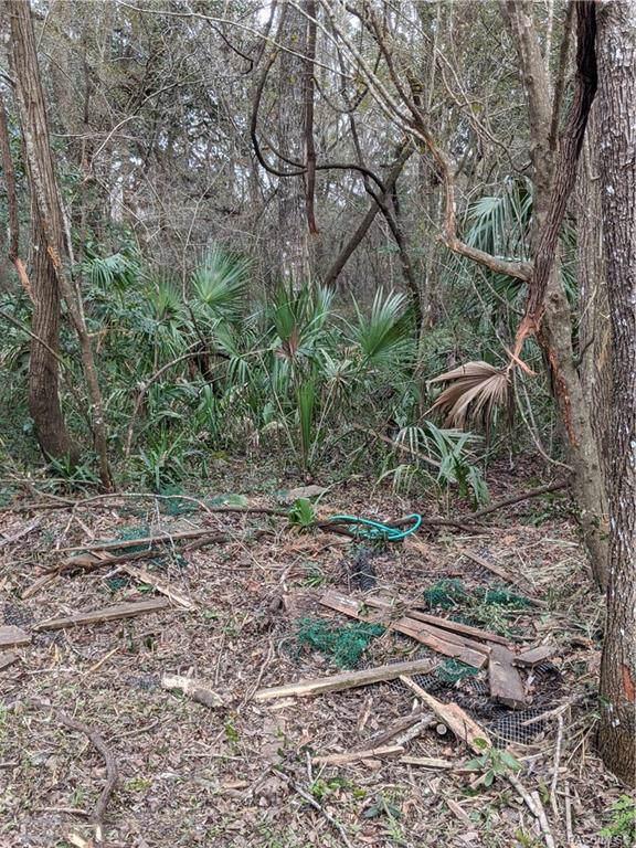 0 Rivertrail Drive, Inglis, FL 34449 (MLS #789422) :: Plantation Realty Inc.
