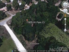 7855 W Pam Court, Homosassa, FL 34448 (MLS #789693) :: Plantation Realty Inc.