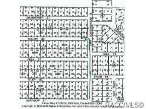 0 Taylor Street W, Inverness, FL 34453 (MLS #789750) :: Pristine Properties