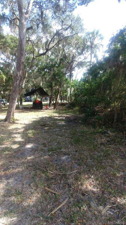 2360 S Diecidue Drive, Crystal River, FL 34429 (MLS #789882) :: Plantation Realty Inc.