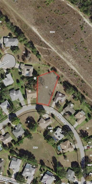 1711 N Wembley Drive, Crystal River, FL 34428 (MLS #789891) :: Plantation Realty Inc.