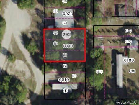 3047 S Kings Avenue, Homosassa, FL 34448 (MLS #789968) :: Plantation Realty Inc.