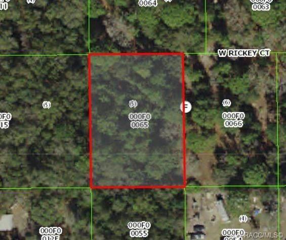 7030 W Rickey Court, Crystal River, FL 34428 (MLS #789981) :: Plantation Realty Inc.
