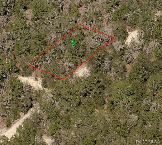 2500 Kirt Street, Inverness, FL 34452 (MLS #789985) :: Plantation Realty Inc.