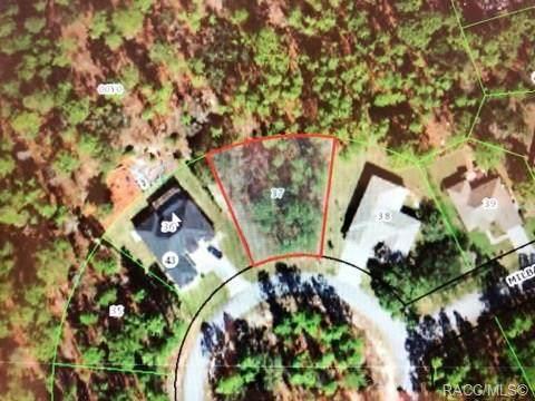 42 Milbark Drive, Homosassa, FL 34446 (MLS #790035) :: Plantation Realty Inc.