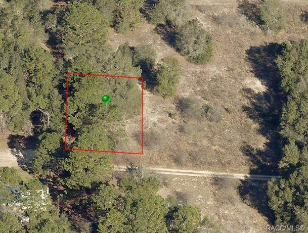 2506 Monroe Street, Inverness, FL 34453 (MLS #790311) :: Plantation Realty Inc.