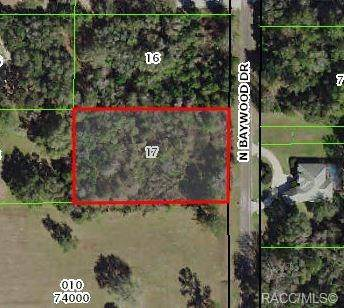 4098 N Baywood Drive, Hernando, FL 34442 (MLS #790530) :: Plantation Realty Inc.