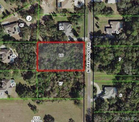 4136 N Baywood Drive, Hernando, FL 34442 (MLS #790532) :: Plantation Realty Inc.