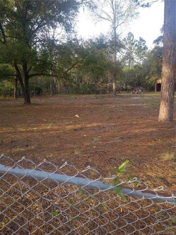 6051 W Last Chance Lane, Dunnellon, FL 34433 (MLS #791058) :: Plantation Realty Inc.