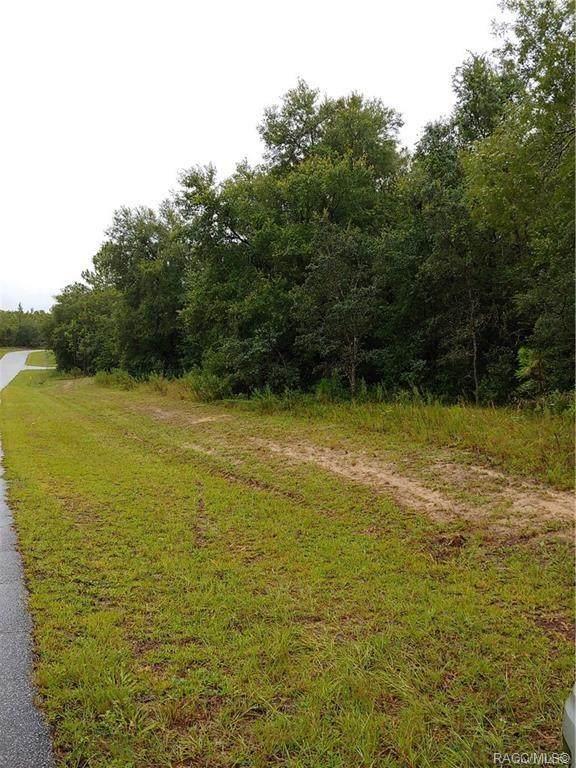 Citrus Springs, FL 34434 :: Pristine Properties