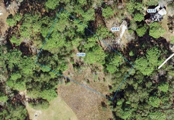 6399 W Country Club Drive, Homosassa, FL 34448 (MLS #791425) :: Plantation Realty Inc.