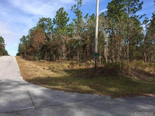 LOT 32 SW Sycamore Road, Dunnellon, FL 34431 (MLS #791679) :: Plantation Realty Inc.