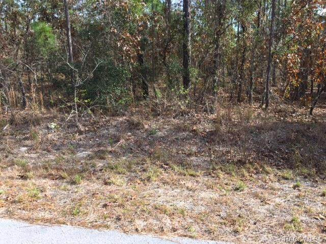 LOT 33 SW Sycamore Road, Dunnellon, FL 34431 (MLS #791697) :: Plantation Realty Inc.