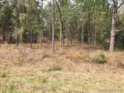LOT 17 SW Rainelle Road, Dunnellon, FL 34431 (MLS #791699) :: Plantation Realty Inc.