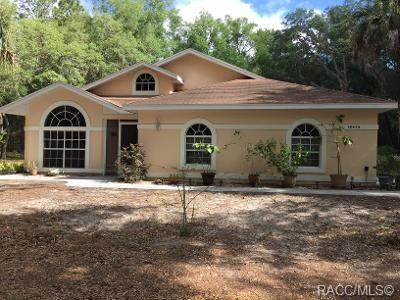 18425 SW 77th Place Road, Dunnellon, FL 34432 (MLS #792148) :: Plantation Realty Inc.