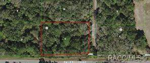 7528 N Chabaud Terrace, Crystal River, FL 34429 (MLS #792192) :: Plantation Realty Inc.