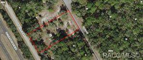 9305 N Buttercup Way, Crystal River, FL 34428 (MLS #792196) :: Plantation Realty Inc.