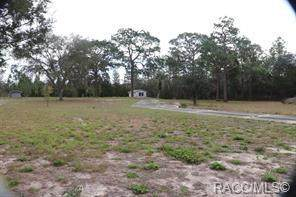 3489 SW Ivy Place, Dunnellon, FL 34431 (MLS #792328) :: Plantation Realty Inc.