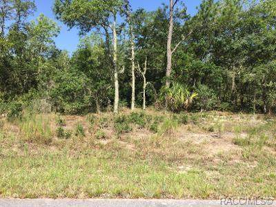 LOT 2,3 SW Willow Road, Dunnellon, FL 34431 (MLS #792589) :: Plantation Realty Inc.