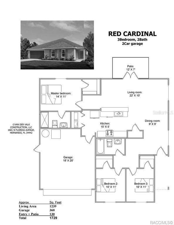 105 N Cunninham Avenue, Inverness, FL 34453 (MLS #792858) :: Plantation Realty Inc.