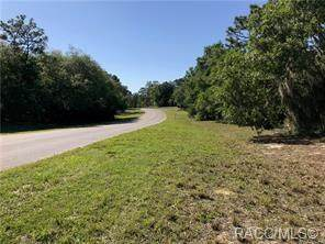 0000 SW 102nd Street Road Road, Dunnellon, FL 34431 (MLS #792864) :: Plantation Realty Inc.