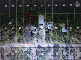 1669 E Mckinley Street, Hernando, FL 34442 (MLS #793051) :: Pristine Properties