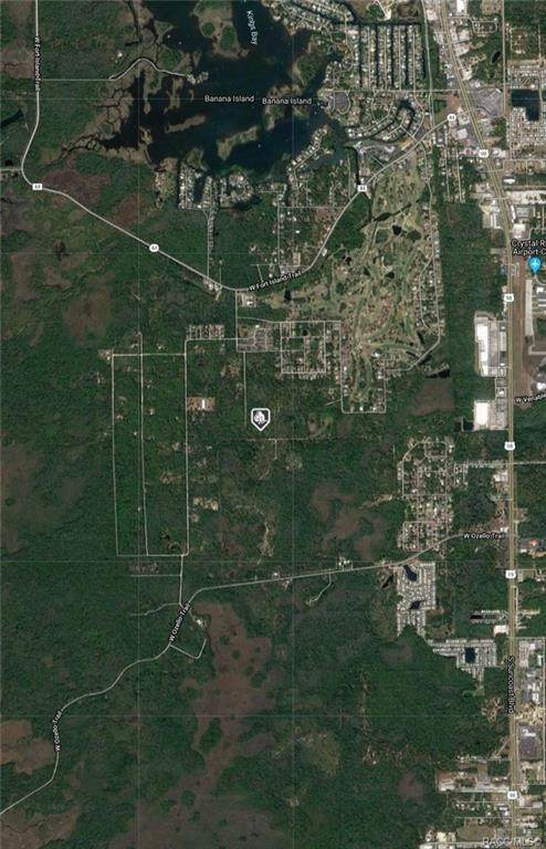 35 N Quiet Pines Point, Crystal River, FL 34429 (MLS #793405) :: Plantation Realty Inc.