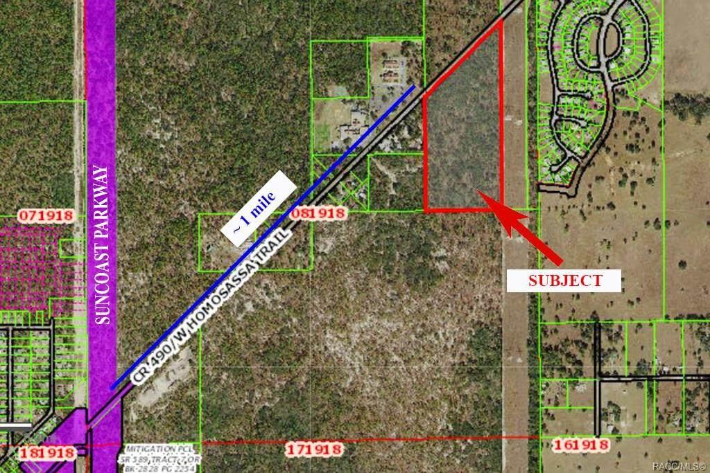 4164 Homosassa Trail - Photo 1