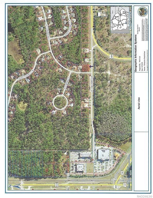1 Greentree Street, Homosassa, FL 34446 (MLS #793946) :: Plantation Realty Inc.