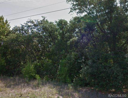 8967 Amboy Drive - Photo 1