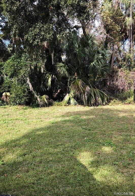 4632 S Sawgrass Circle, Homosassa, FL 34448 (MLS #794155) :: Plantation Realty Inc.
