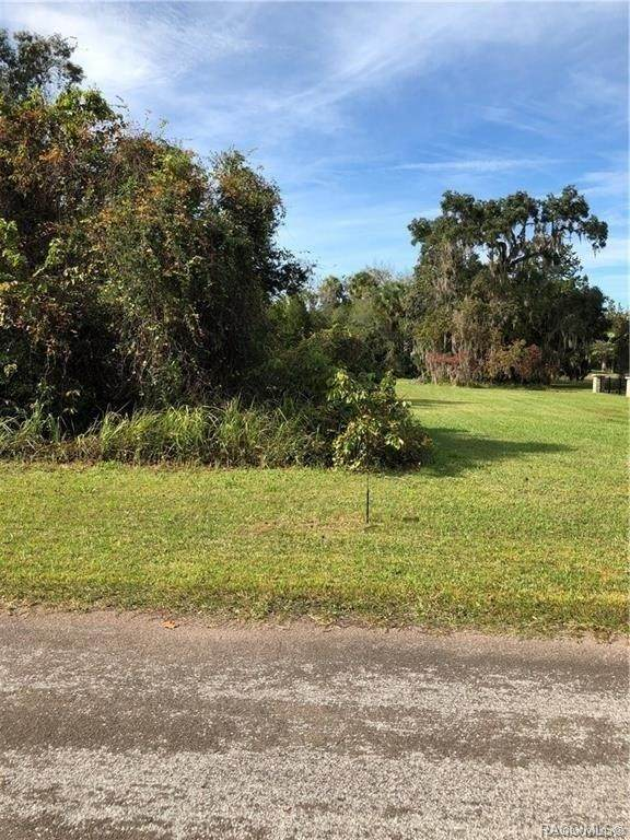 4618 S Sawgrass Circle, Homosassa, FL 34448 (MLS #794170) :: Plantation Realty Inc.