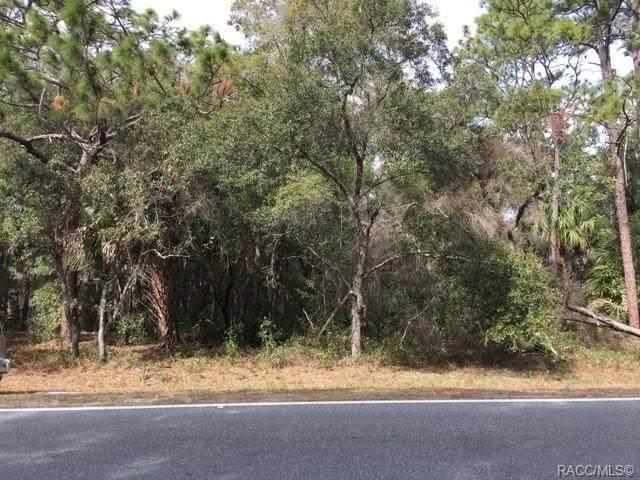 7641 W Homosassa Trail, Homosassa, FL 34448 (MLS #794334) :: Plantation Realty Inc.