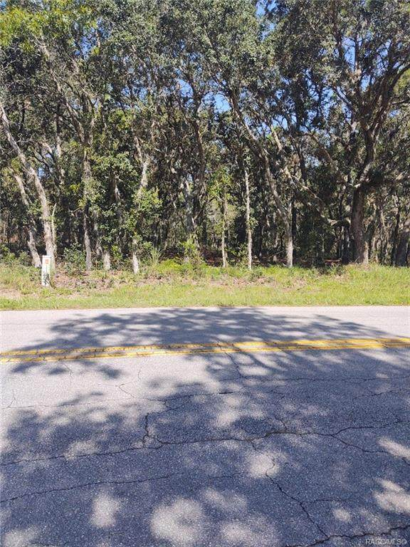 904 N Seton Avenue, Lecanto, FL 34461 (MLS #794571) :: Plantation Realty Inc.