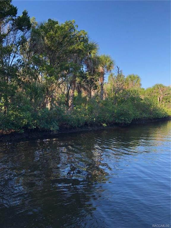 12051 W Gulf Breeze Court, Crystal River, FL 24419 (MLS #794621) :: Plantation Realty Inc.
