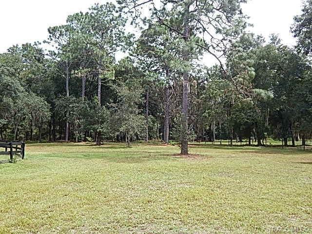 5728 S Garcia Terrace N, Inverness, FL 34452 (MLS #794681) :: Plantation Realty Inc.