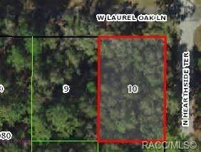 9692 W Laurel Oak Lane, Crystal River, FL 34428 (MLS #794899) :: Plantation Realty Inc.