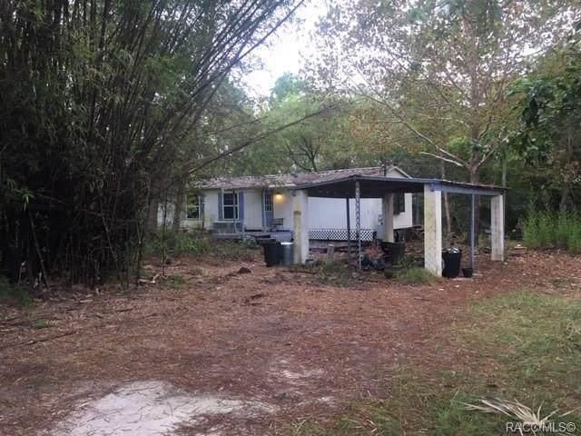 5511 S Will Point, Homosassa, FL 34446 (MLS #794914) :: Plantation Realty Inc.