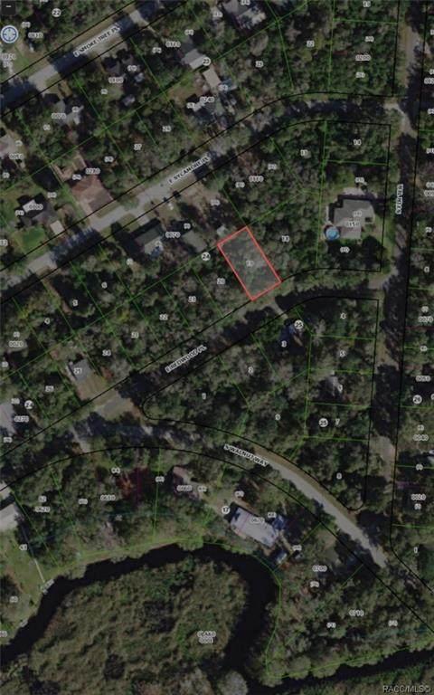 9333 E Redwood Place, Inverness, FL 34450 (MLS #794936) :: Plantation Realty Inc.