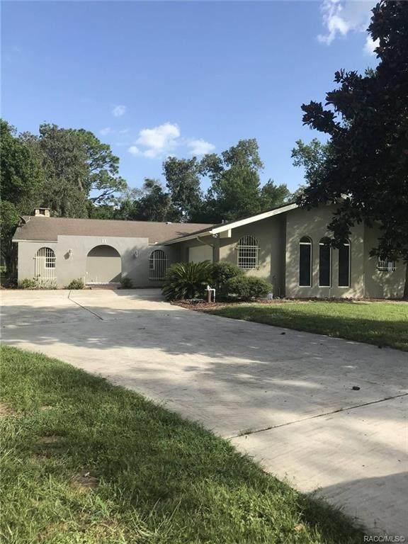 11 Bumelia Court, Homosassa, FL 34446 (MLS #795020) :: Plantation Realty Inc.