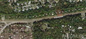 6210 West Oak Park Boulevard, Homosassa, FL 34446 (MLS #795147) :: Plantation Realty Inc.