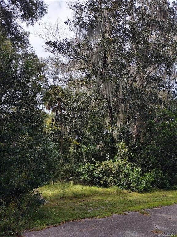 1354 N Burden Point, Inverness, FL 34453 (MLS #795551) :: Plantation Realty Inc.