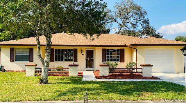 9196 N Fawn Way, Citrus Springs, FL 34434 (MLS #795714) :: Plantation Realty Inc.
