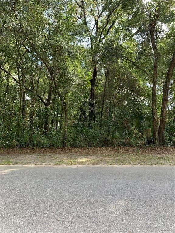 1134 NE 1st Terrace, Crystal River, FL 34429 (MLS #795769) :: Plantation Realty Inc.