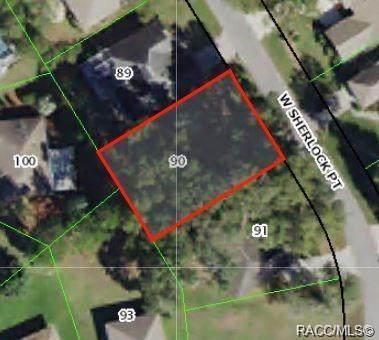 3190 N Sherlock Point, Hernando, FL 34442 (MLS #795999) :: Plantation Realty Inc.