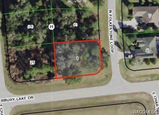 2792 N Folkestone Loop, Hernando, FL 34442 (MLS #796000) :: Plantation Realty Inc.